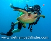 PRIVATE SNORKELING - ISLAND EXCURSION TO CHAM ISLAND (1 DAY)