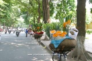 Vietnam Package Tours | Hanoi- Vung Tau