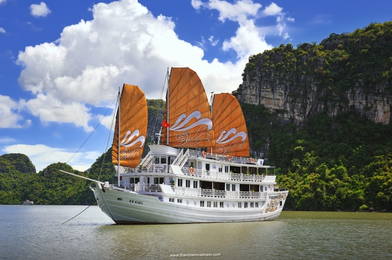 Vietnam trip- Saigon - Hoian Ancient- Halong Bay 1day-Hanoi