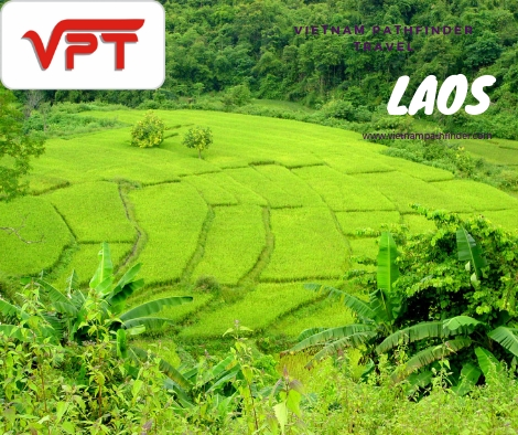 Laos Tours: Luang Prabang - Pak Ou Cave - Vientiane