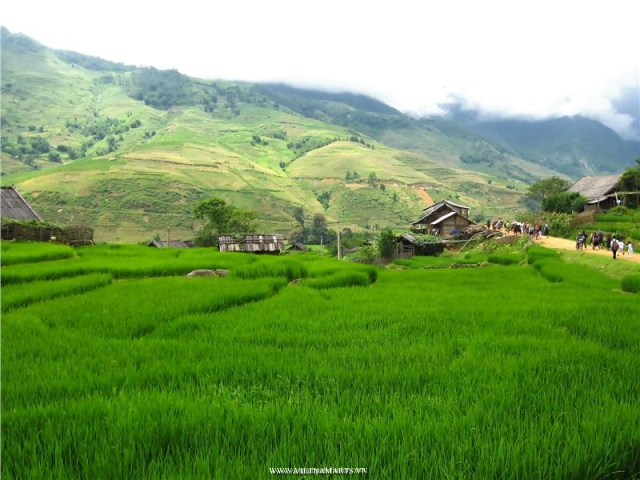 Lao Chai and Ta van villages in Sapa Mountains