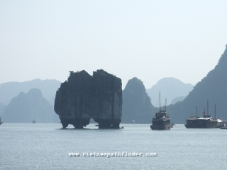 Vietnam Travel and  Highlights